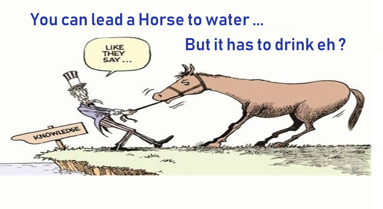 Like a Horse to Water ... You Must Drink !